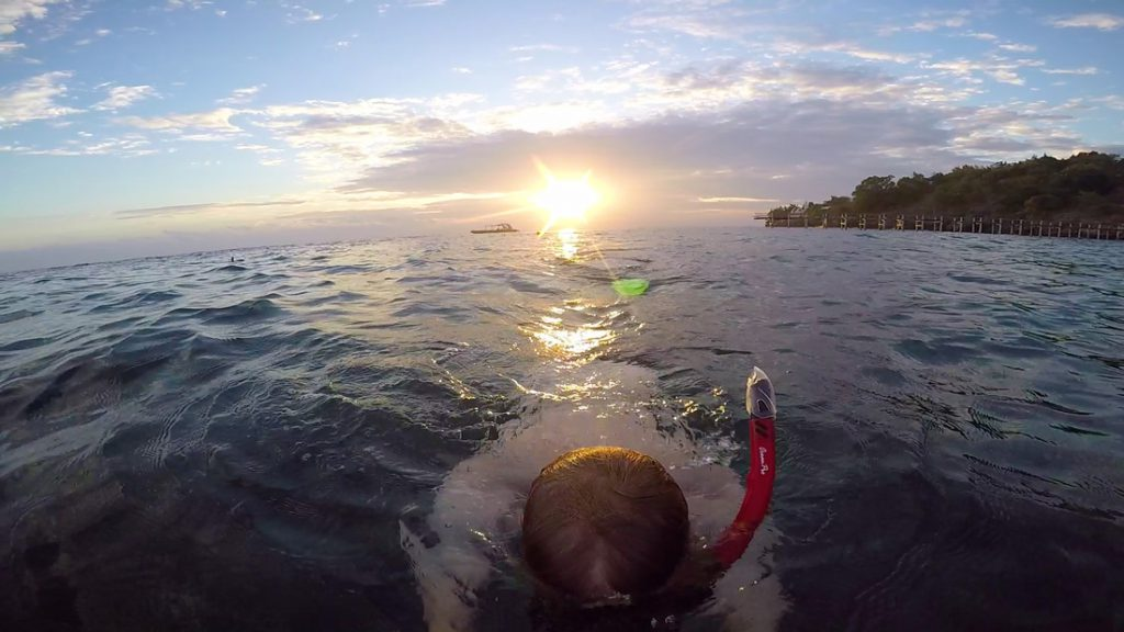 Snorkelen in Menjangan