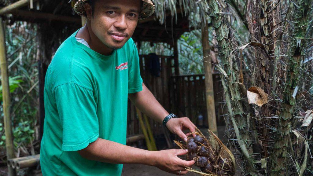 Salak fruit in Bali