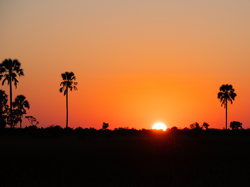 Mokoro Delta Botswana