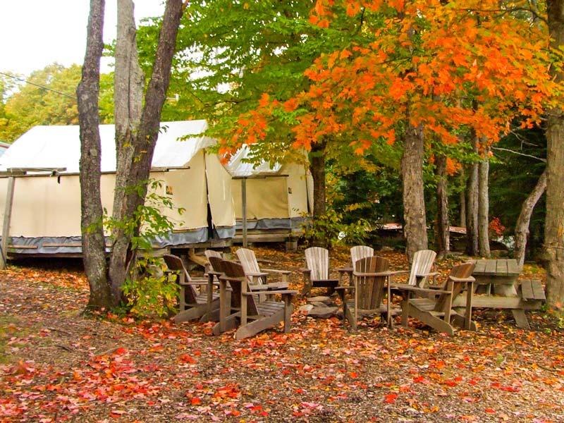 tent-cabin-fall-colour-2