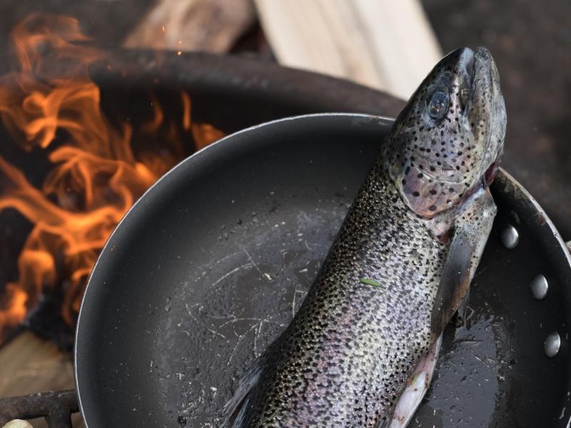 kano-kamperen-zweden-campfire-stories-13