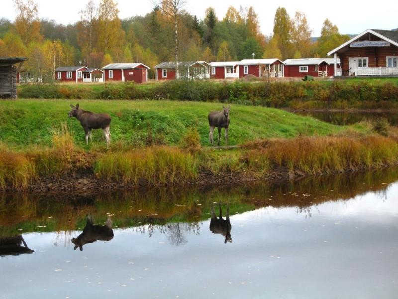 kanoen-kamperen-zweden-campfire-stories-3